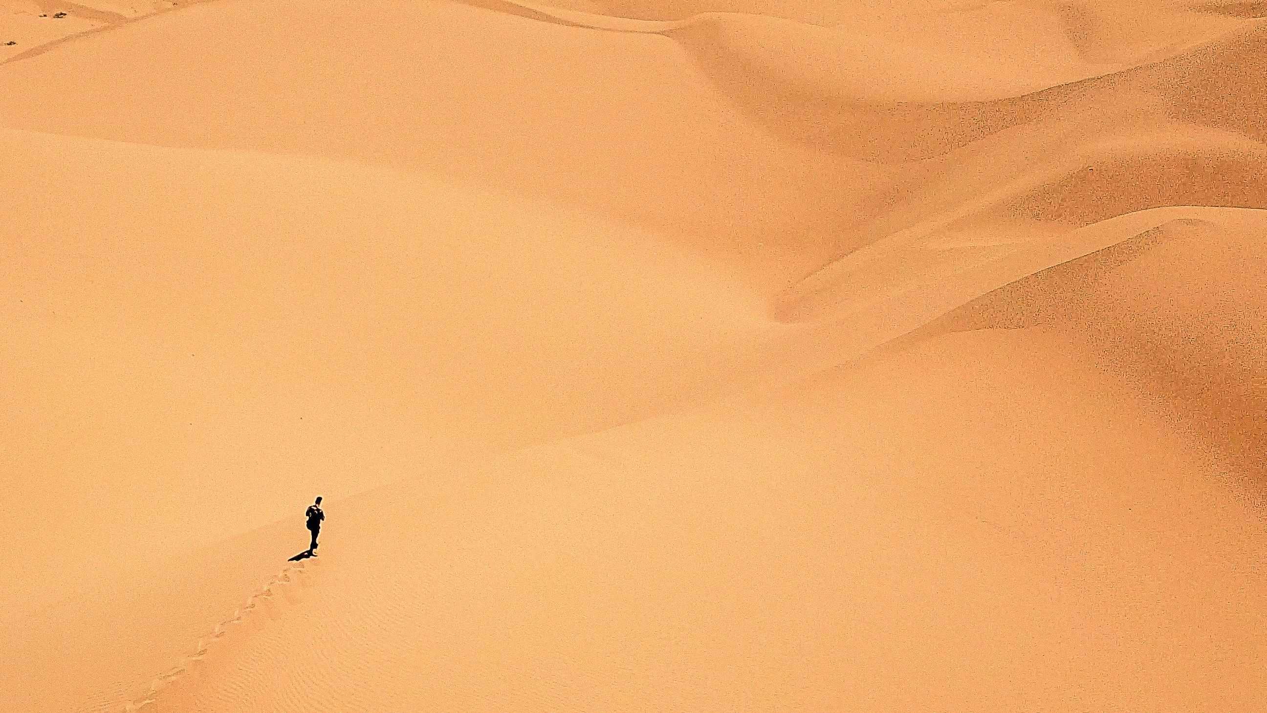 Wanderer in Sandwüste