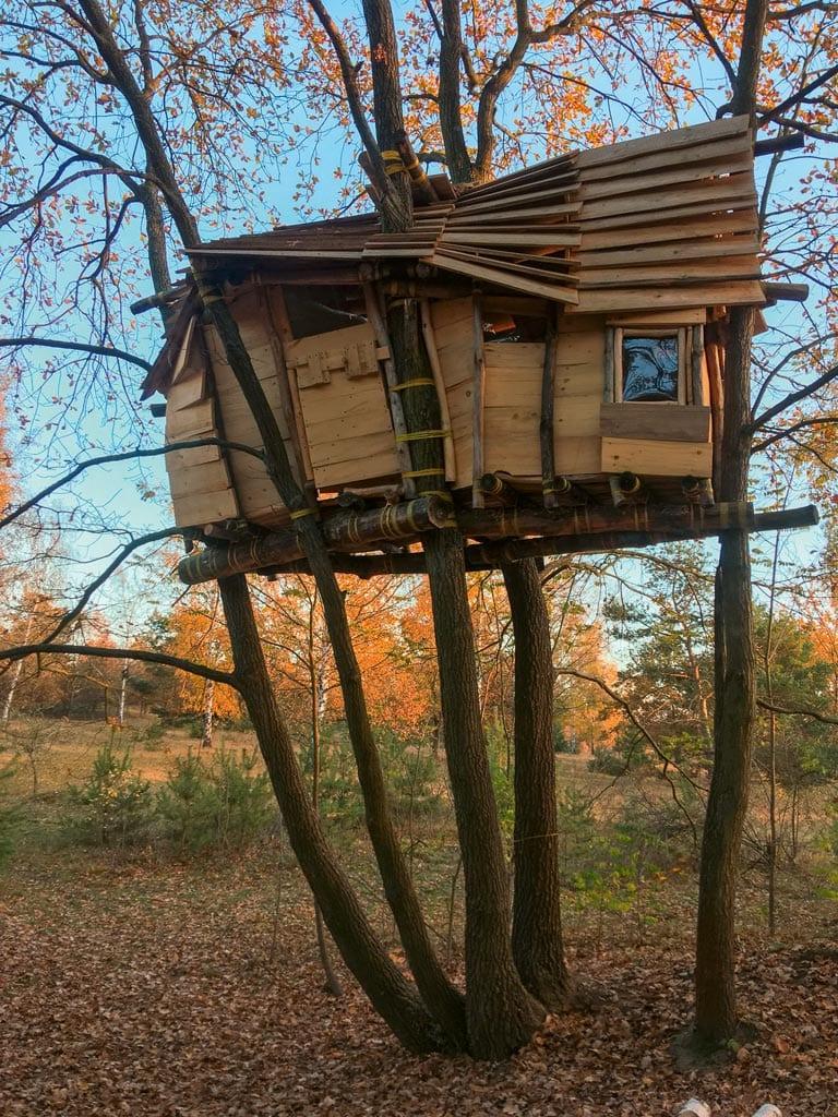 Baumhaus zum Selbermachen: Eine Familie will hoch hinaus.